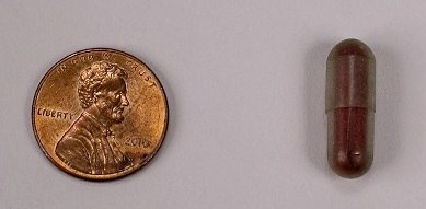 On left, an American penny. On right, a small, red capsule. Pill-shaped. Appears glossy or maybe sticky. Very small in comparison to penny.