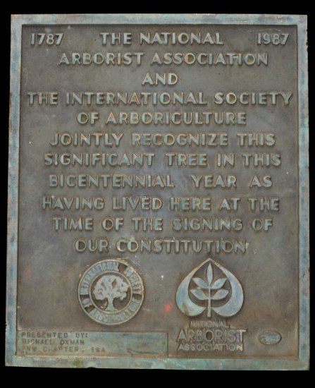 A bronze colored plaque that shows the marks of age.