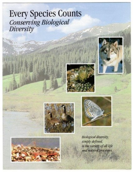 Brochure with images of wolves, butterfly, fish, geese, and mountain background.