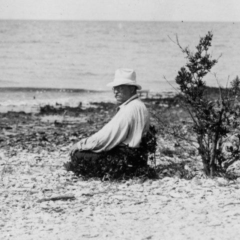 Theodore Roosevelt on a beach