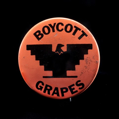 Boycott Grapes button