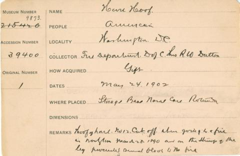 Catalog card for horse hoof, typed and handwritten text