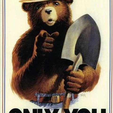 An iconic image of Smokey the Bear. Smokey Bear's famous phrase could be seen as a derivative of Uncle Sam's. Forest Service, U.S. Department of Agriculture.