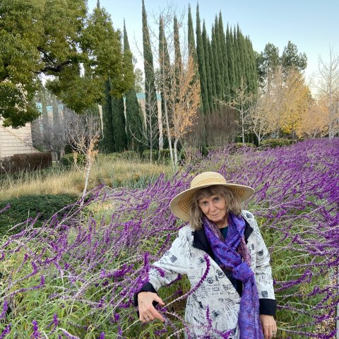 Woman in lavendar garden