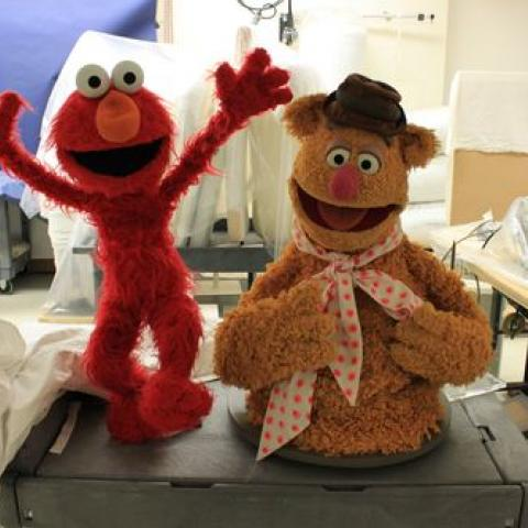 Elmo and Fozzie Bear wait in the conservation lab before their debut at the donation ceremony