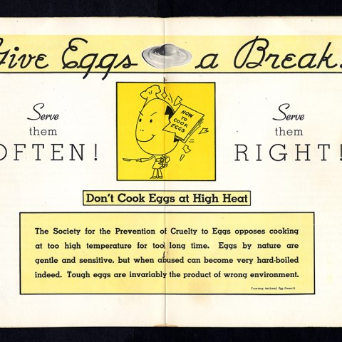 """A sign about Eggs. It says """"give eggs a break!"""" at the top and has an illustration of an egg man that looks sort of evil in the middle. Someone threw a cookbook at his head and broke it but he didn't seem to notice."""