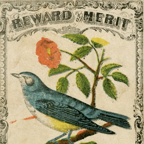 """Detail of one of the rewards shown in the blog post below. It includes an illustration of a blue bird on a branch with a red flower and says, """"Reward of Merit."""""""