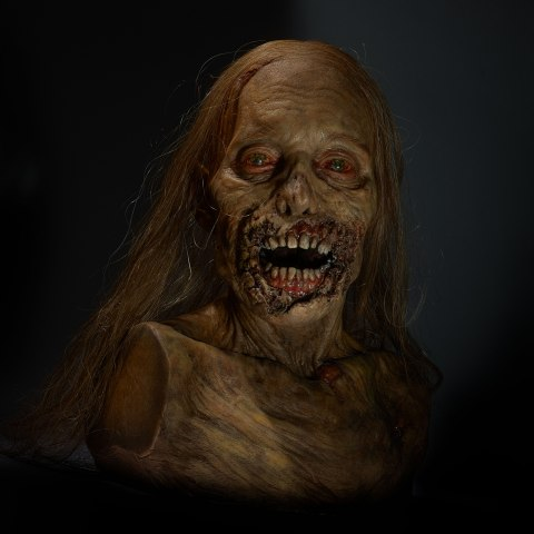A model of the head and decolletage of what used to be a woman but is now a creature with leathery and deteriorating skin opening its lipless maw hungrily. It doesn't have arms.