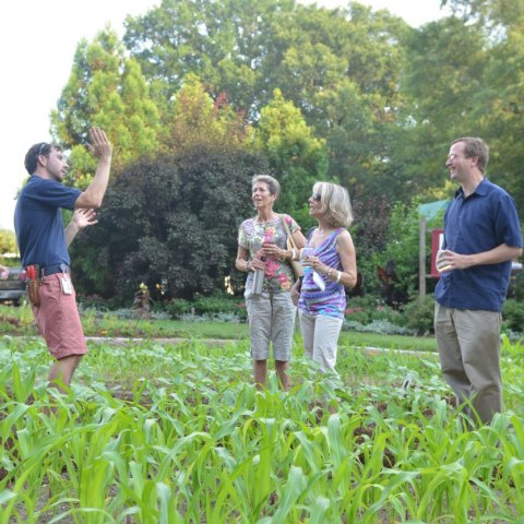 Four people standing among plants in a garden, trees in the background