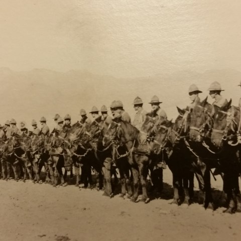 Dozens of soldiers on horseback stand in a line, shoulder to shoulder. Mountains visible in background. Desert sand.