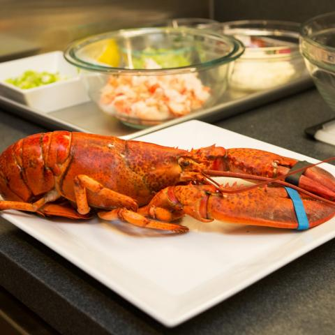 Lobster on a plate