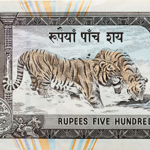A portion of a piece of paper currency. A pair of tigers frolic in a stream. There is text above and below them within an ornate order. The paper is cream-colored with blue and orange stripes