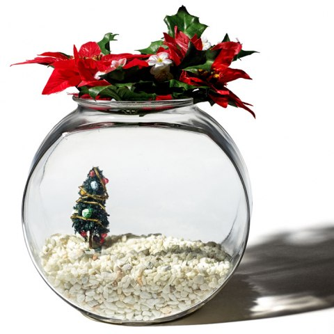 Photo of prop fish bowl with holiday decorations