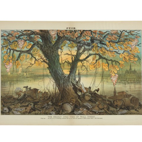 """Cartoon drawing with title """"The Deadly Upas Tree of Wall Street"""" shows several men drifting to sleep beneath a large tree whose leaves are made of gold coins."""