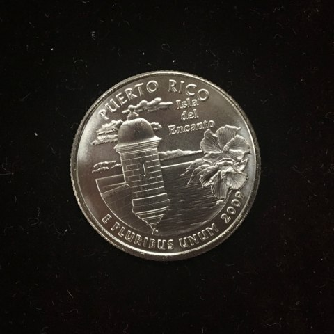 The tails side of a standard quarter. It is a Puerto Rico quarter, with a bay and flowers and the year 2009
