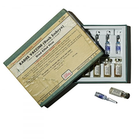"""Rectangular cardboard box labeled """"Rabies Vaccine (Duck Embryo)"""" in a printed label. It is half open. Inside, vials with liquid are visible."""