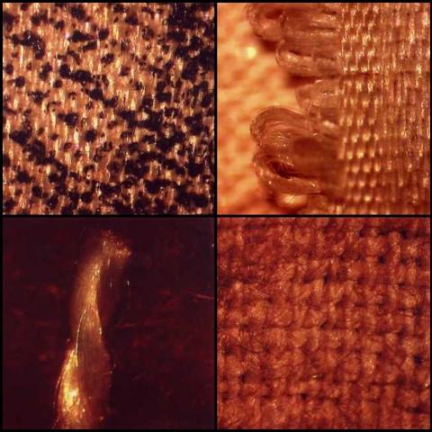 Close-up photo of fabric texture