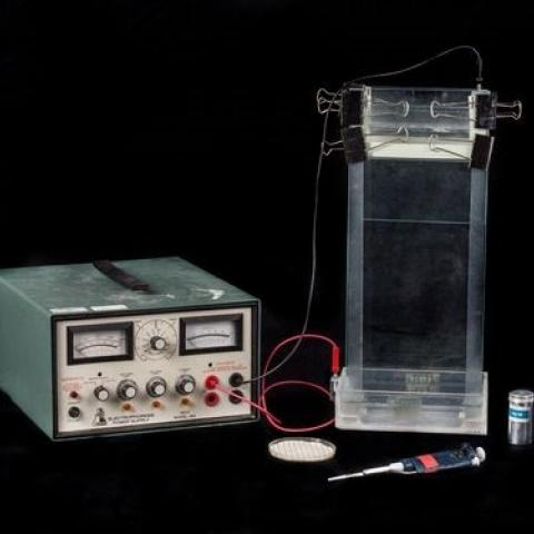 Electrophoresis set-up (two boxes, wires, probe)