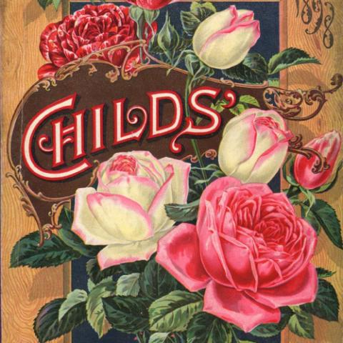 An 1898 catalog