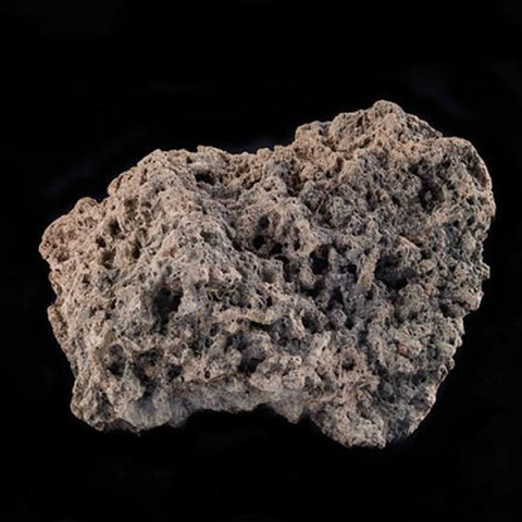 A chunk of a solid, stone-lik substance that is riddled with small holes.