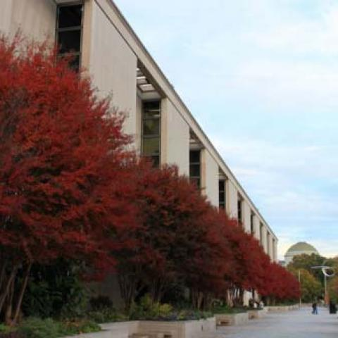 Fall at the museum, exterior view