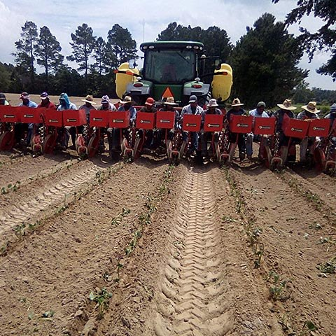 Field workers in masks pose in front of a tractor